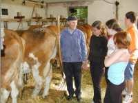 Urlaub auf dem Bauernhof in Deutschland - Bild vom Kuhstall am Bauernhof Fingermühl