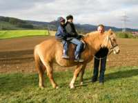 Reiten auf dem Bauernhof Fingermühle - Ferien in Bayern