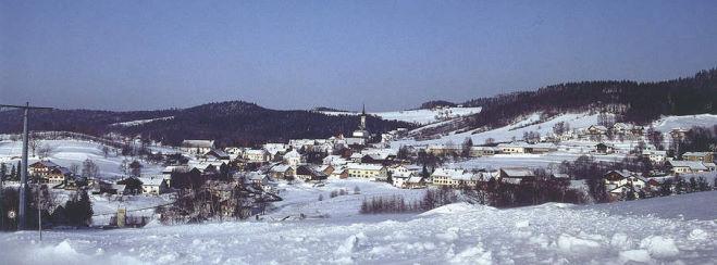 Luxuschalets im Bayerischen Wald Bergdorf Bayern Grainet Winteransicht