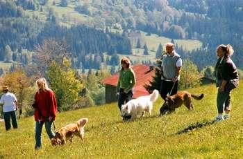 Kurzreisen mit Kind in Bayern Kurzurlaub mit Hund